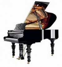 Schimmel K169 Belle Epogue White