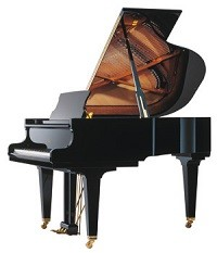 Schimmel K169T Tradition Ebony
